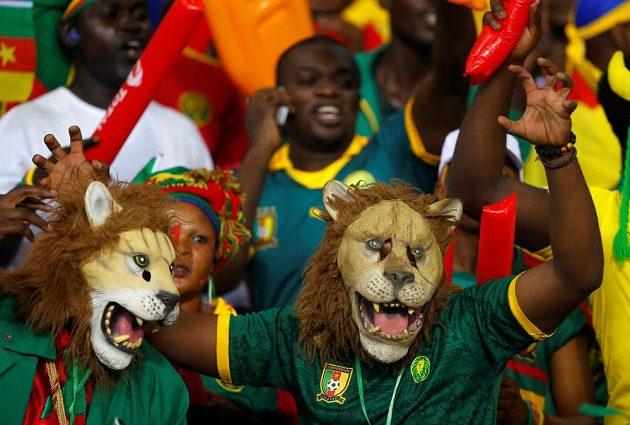 Zde jsou lvi! Z Kamerunu!