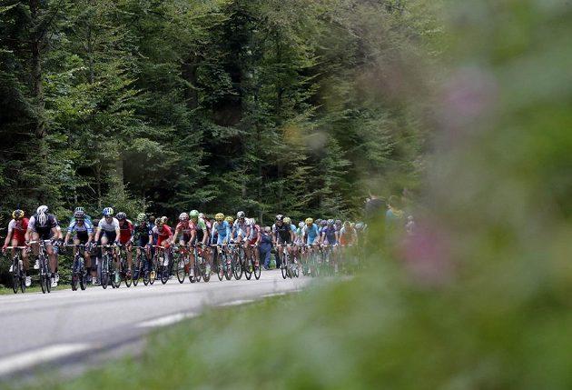 Cyklisté na trati deváté etapy Tour de France.