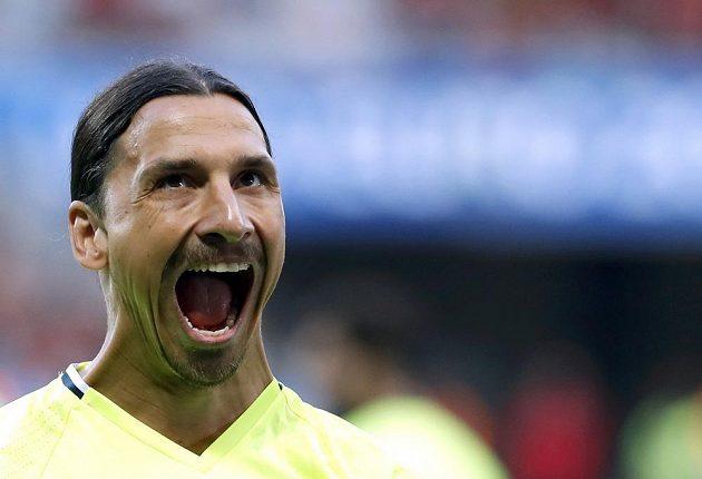 Švédský snajpr Zlatan Ibrahimovic.