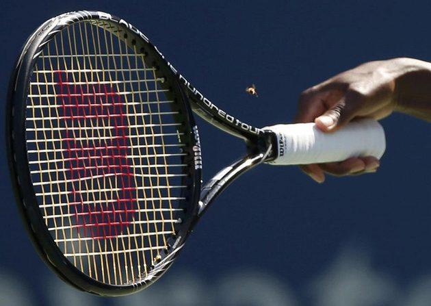 Nezvaný návštěvník na utkání Venus Williamsové s Japonkou Dateovou-Krummovou.
