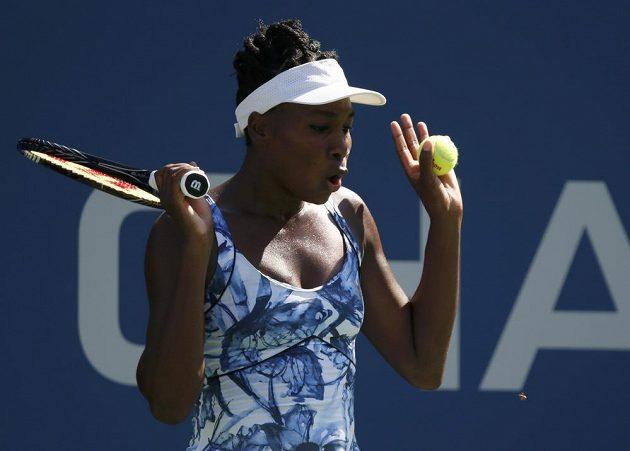 Venus Williamsová a neodbytná včela.