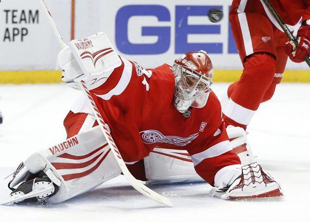 Brankář Detroitu Petr Mrázek (34) vyráží střelu v zápase NHL proti New Yorku Rangers.