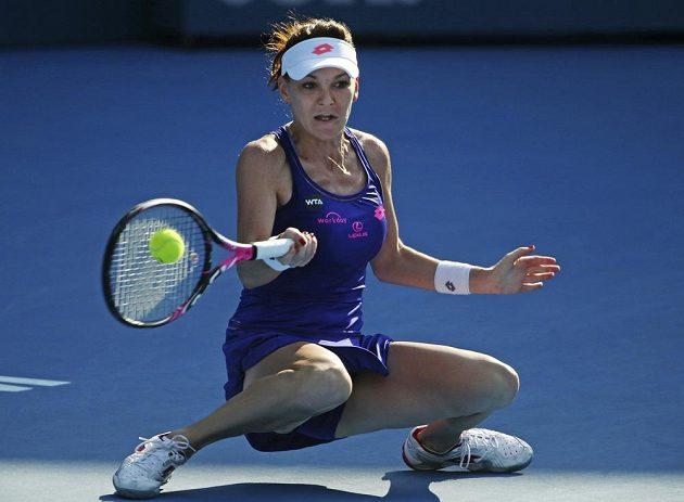 Polská tenistka Agnieszka Radwaňská během semifinálového zápasu s Barborou Strýcovou na turnaji v Sydney.