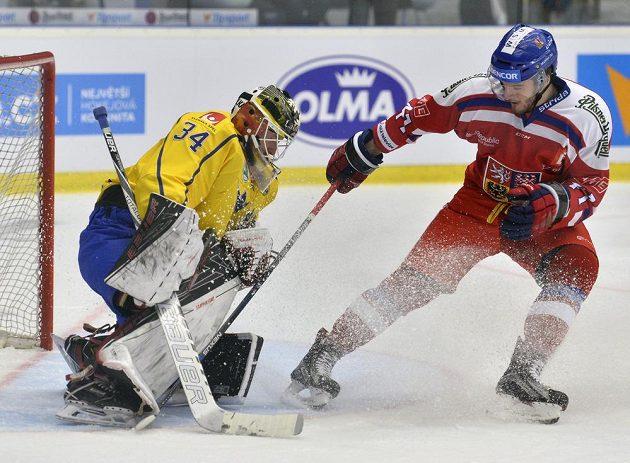 Brankář Švédska Joel Lassinantti a Tomás Filippi z české reprezentace v utkání turnaje Karjala.