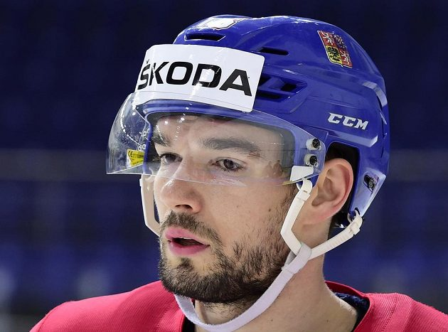 Útočník českého hokejového týmu Michal Birner.