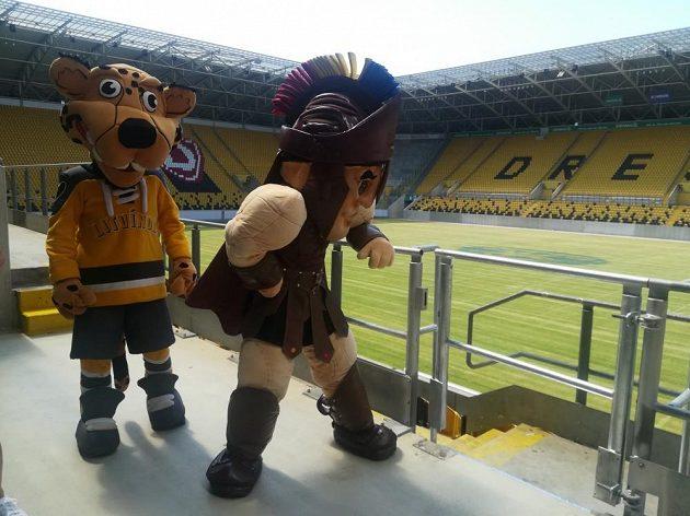 Maskot HC Verva Litvínov (vlevo) a HC Sparta Praha na fotbalovém stadionu Rudolfa Harbiga v Drážďanech?