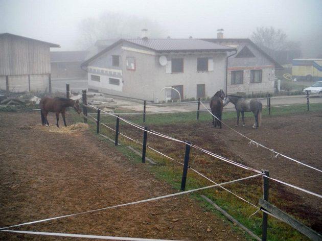 Farma Na Srdéčku u Hvozdu na Prostějovsku.