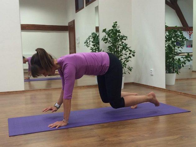 Cvičení na střed těla - lezení po čtyřech, fáze 2.