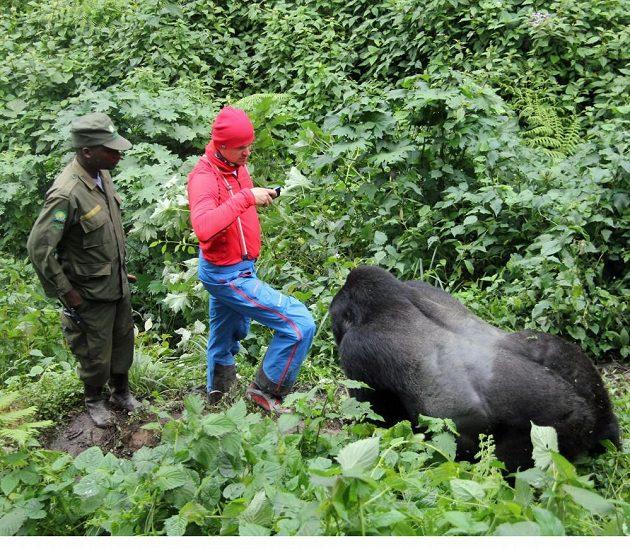 Martin Prokop si fotí gorilu.