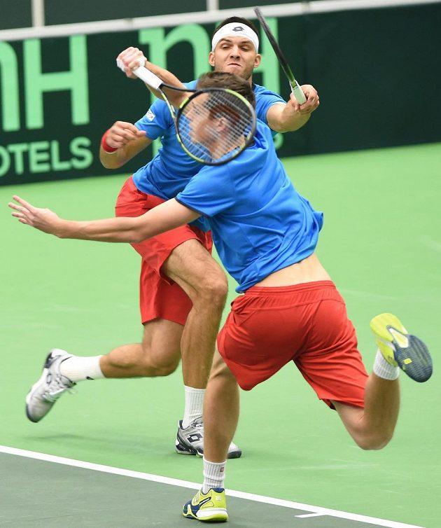 Čeští tenisté Adam Pavlásek a Jiří Veselý v daviscupové čtyřhře proti Austrálii.