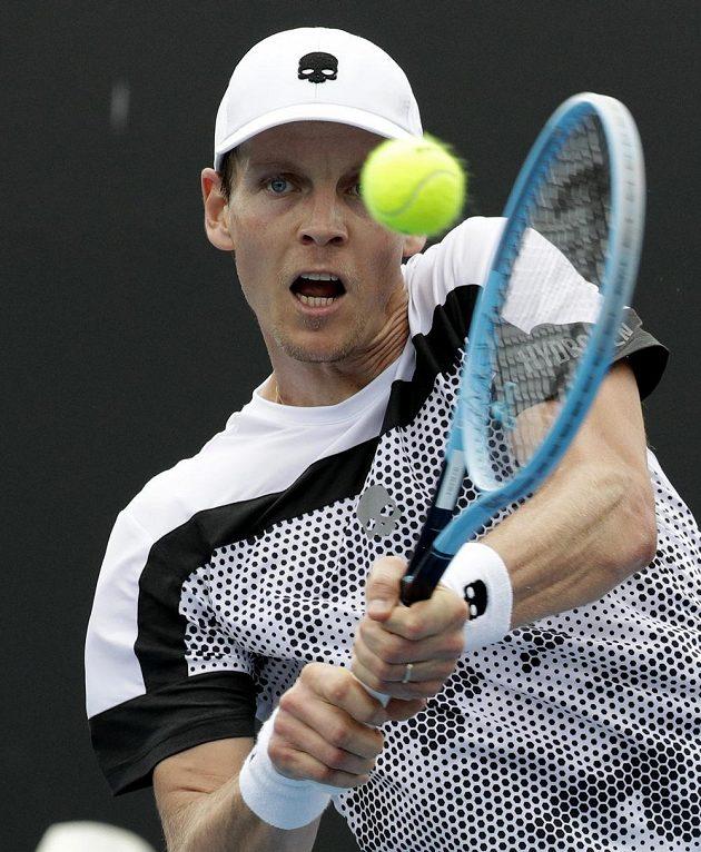 Český tenista Tomáš Berdych je při návratu po půlroční pauze kvůli zranění zad ve výborné formě. Na Australian Open zatím drtí soupeře.