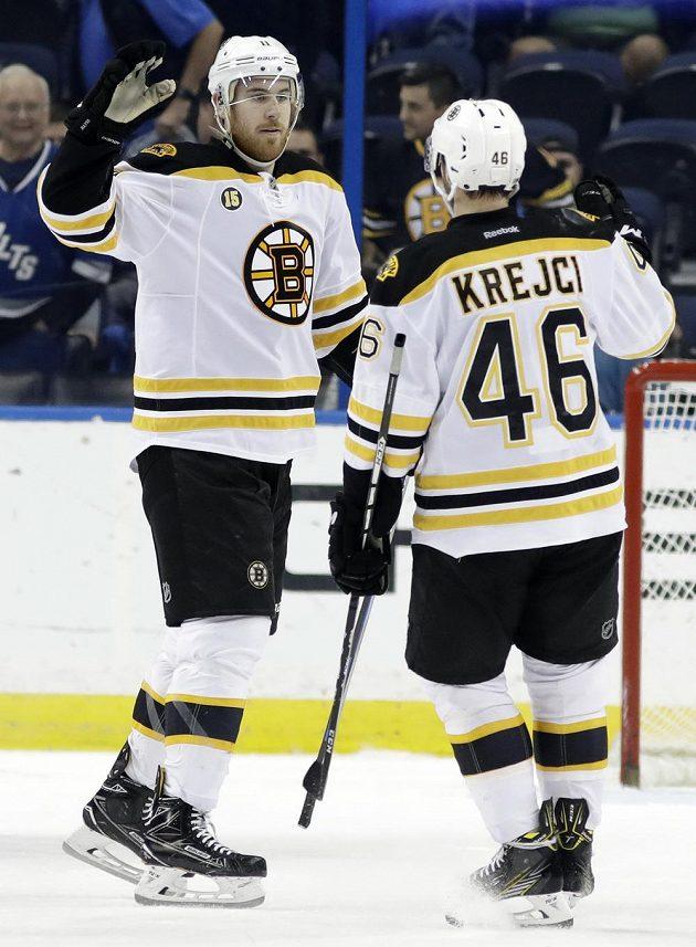 Útočník týmu Boston Bruins Jimmy Hayes slaví gól s Davidem Krejčím v utkání NHL s Tampou Bay Lightning.