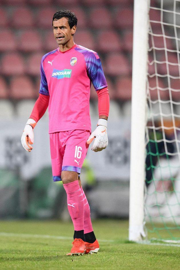 Brankář Viktorie Plzeň Aleš Hruška během utkání 8. kola Fortuna ligy v Příbrami.