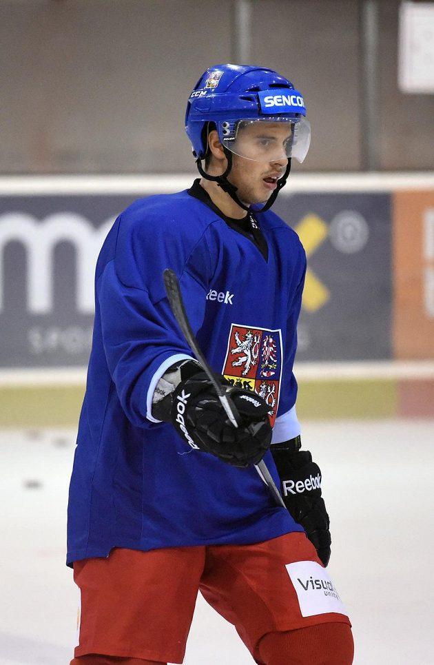Útočník Tomáš Hyka během tréninku hokejové reprezentace v Praze.