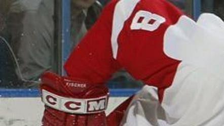 VNHL nastupoval Jiří Fischer vdresu Detroitu Red Wings.