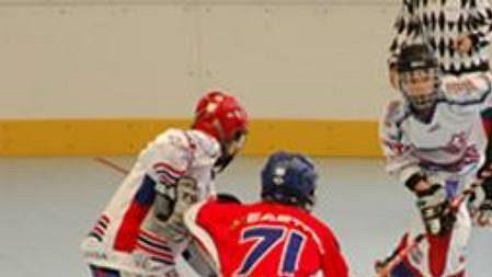 České in-line hokejistky - archivní foto