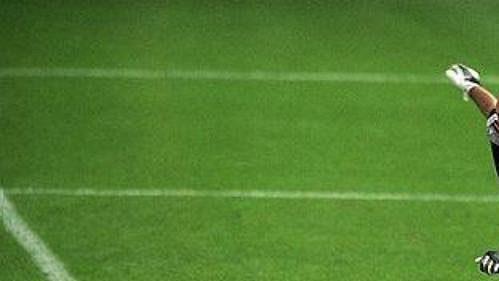 Francouzský brankář Fabien Barthez.