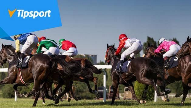 Jak najít vítězného koně? Bookmaker Tipsportu radí před Velkou Pardubickou