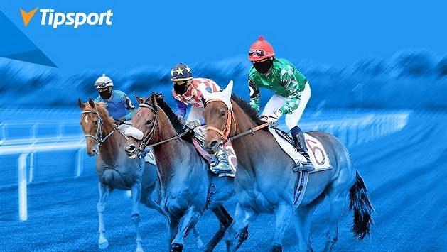 Sázky bude Tipsport přijímat i přímo na pardubickém závodišti.