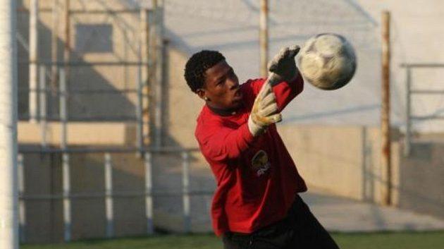 Fotbalový brankář Virgil Vries