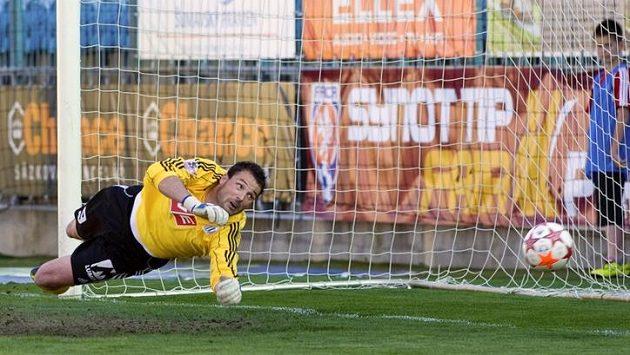 Budějovický brankář Michal Daněk si sice po penaltě Jiřího Štanera na míč sáhl, ale gólu nezabránil.
