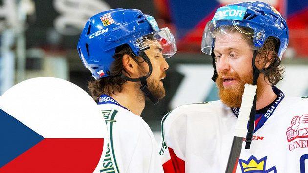 c42f19b7aa3d7 MS 2019: Sestava českého týmu a soupiska pro MS v hokeji - Sport.cz