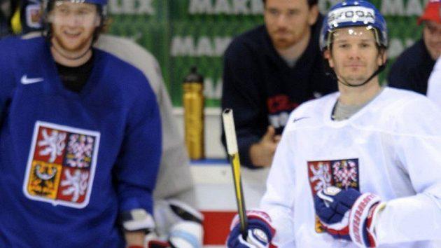 Roman Červenka na tréninku hokejové reprezentace