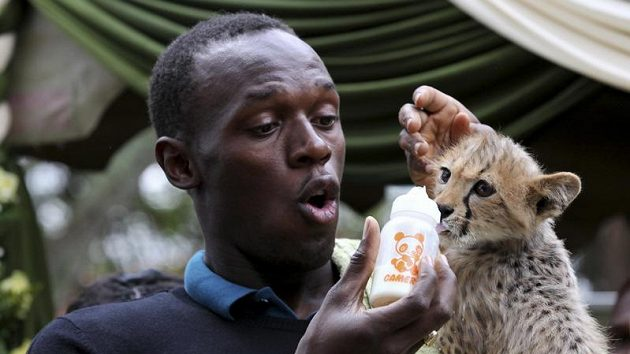 Fenomenální sprinter Usain Bolt s mládětem geparda