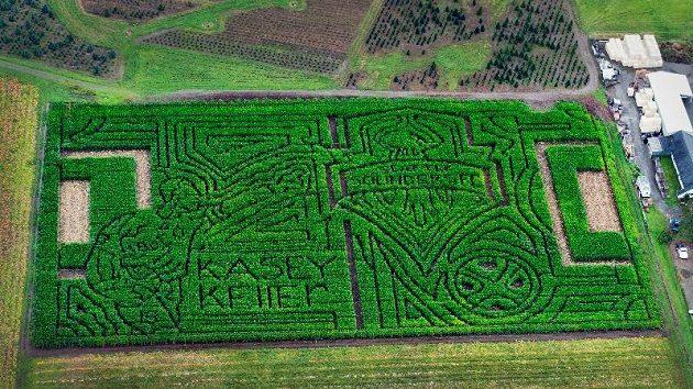 Fotbalové hřiště s brankářem Kellerem z kukuřičného pole