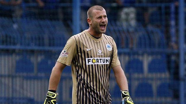 Brankář David Bičík ještě v dresu Liberce, s nímž minulé léto slavil český titul.
