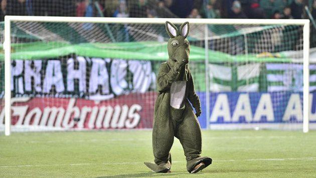 Maskot Bohemians 1905 na stadiónu v Ďolíčku po odložení utkání mezi pražským klubem a Plzní kvůli namrzlému trávníku.