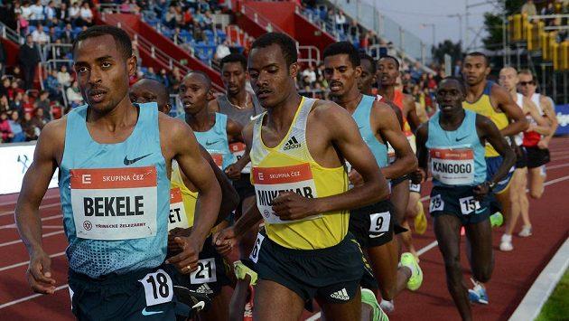 Běžec Kenenisa Bekele na archivním snímku z mítinku Zlatá tretra 2013 v Ostravě.