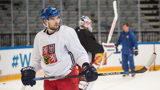Útočník Michal Birner během tréninku české hokejové reprezentace.