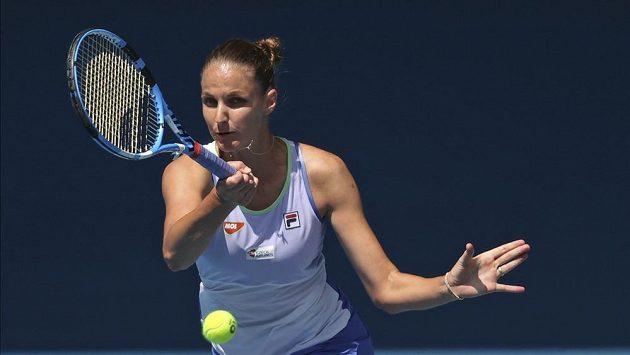 Karolína Plíšková bojuje v úvodním kole Australian Open.