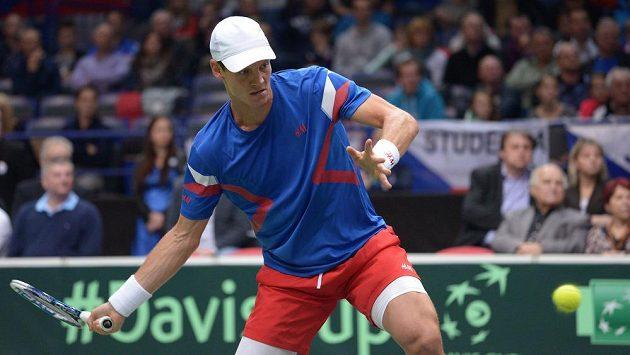Tenista Tomáš Berdych během utkání 1. kola Davis Cupu