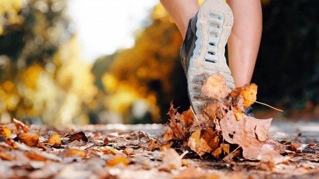 Podzim jako sklon roku nemusí znamenat také sklon venkovních aktivit, právě naopak!
