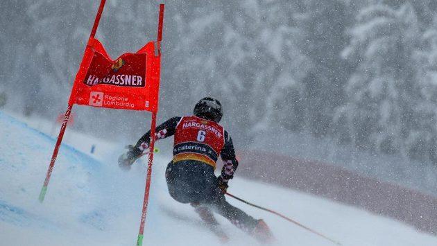 Chorvat Filip Zubčič v prvním obřím slalomu v Santa Caterině během Světového poháru. Druhý závod je přeložen.