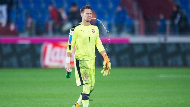 Český brankář Tomáš Vaclík v reprezentačním dresu.