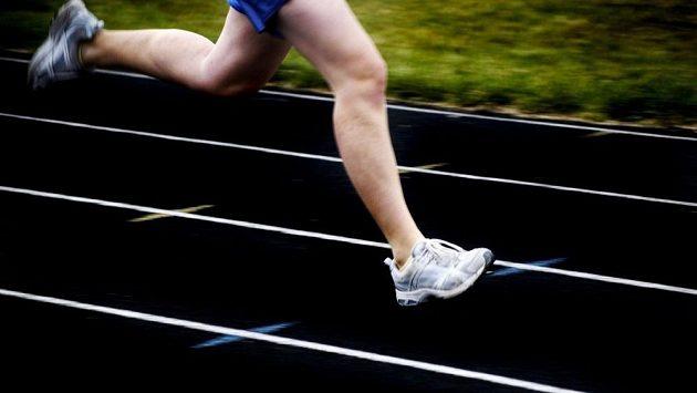 Rychlost musí být vykoupena poctivými tréninky.