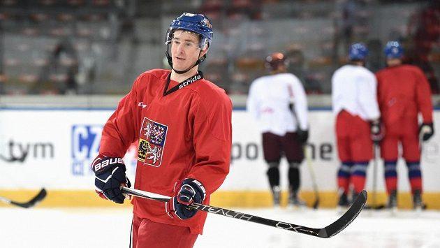 Roman Červenka během tréninku hokejové reprezentace v Praze v rámci přípravy na ZOH 2018.