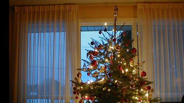 Jaké budou Vánoce českých sportovců?