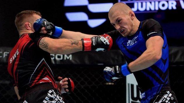 Zápasy MMA jsou odloženy, stejně jako další sporty.