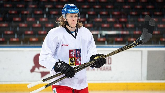 Obránce Libor Šulák během tréninku hokejové reprezentace v Praze.