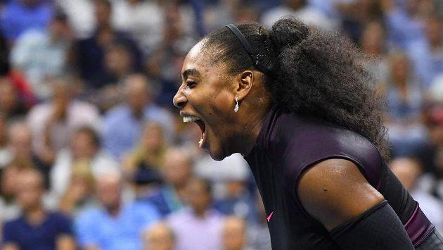 Serena Williamsová investovala, ukáže se na galavečeru UFC?