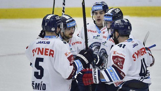 Hokejisté Liberce se radují ze vstřelené branky.