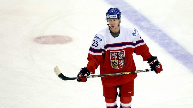 Chomutovský hokejista Ondřej Kaše.