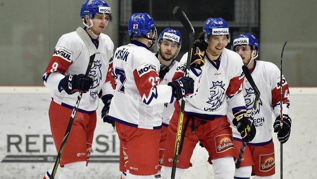 Česká hokejová reprezentace do dvaceti let se na domácím MS pokusí po 15 letech ukončit čekání na medaili.