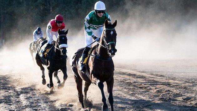 Žokej Josef Váňa mladší na koni No Time To Lose během 128. Velké pardubické.