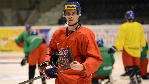 Útočník Roman Červenka během tréninku hokejové reprezentace