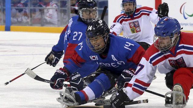 Čeští sledge hokejisté prohráli na paralympiádě s Koreou 2:3 v prodloužení.